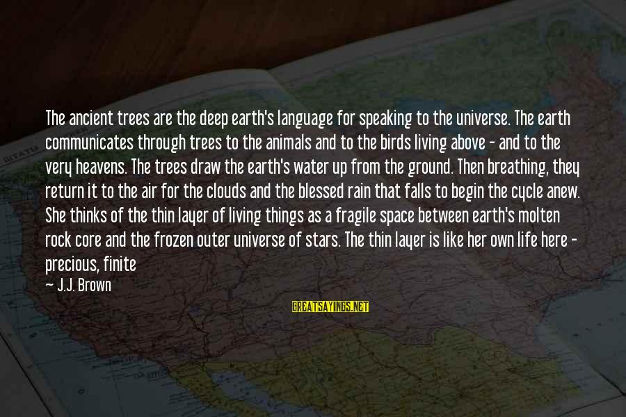 The Earth And Stars Sayings By J.J. Brown: The ancient trees are the deep earth's language for speaking to the universe. The earth
