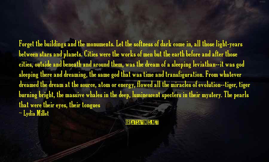 The Earth And Stars Sayings By Lydia Millet: Forget the buildings and the monuments. Let the softness of dark come in, all those
