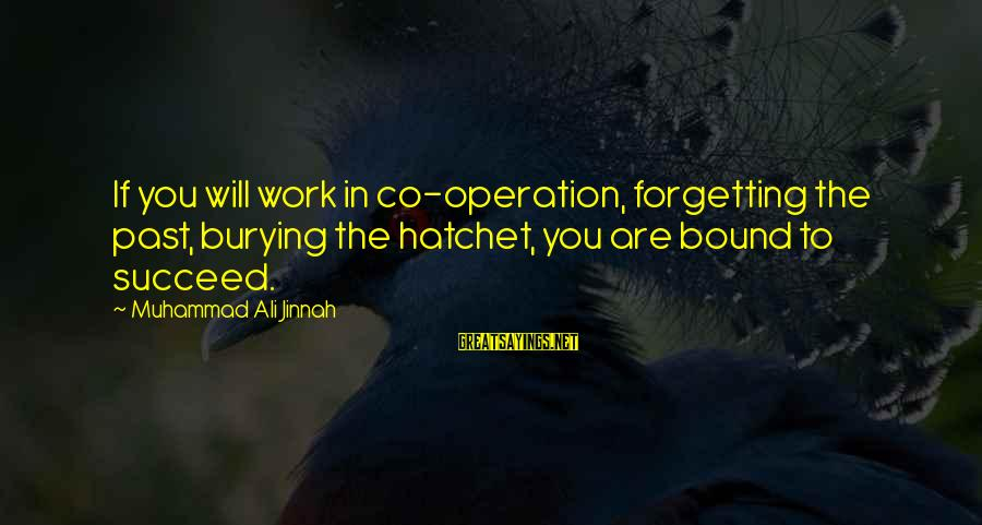 The Forgetting The Past Sayings By Muhammad Ali Jinnah: If you will work in co-operation, forgetting the past, burying the hatchet, you are bound