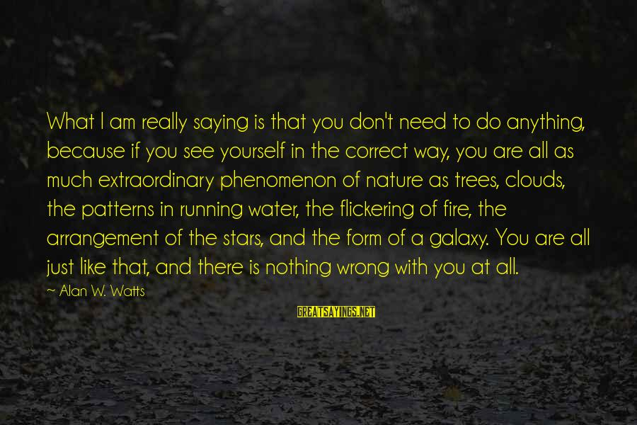 The Galaxy And Stars Sayings By Alan W. Watts: What I am really saying is that you don't need to do anything, because if