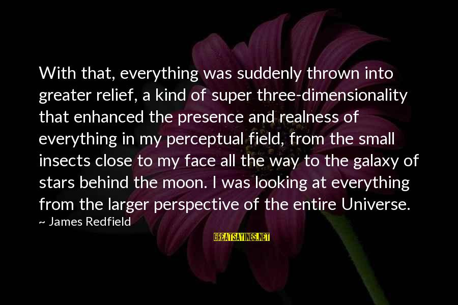 The Galaxy And Stars Sayings By James Redfield: With that, everything was suddenly thrown into greater relief, a kind of super three-dimensionality that