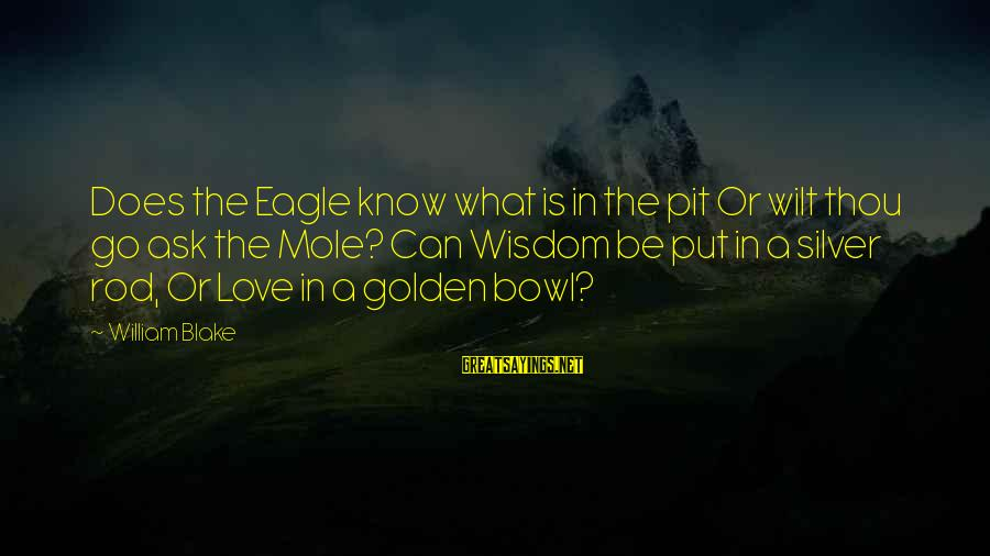 The Golden Bowl Sayings By William Blake: Does the Eagle know what is in the pit Or wilt thou go ask the
