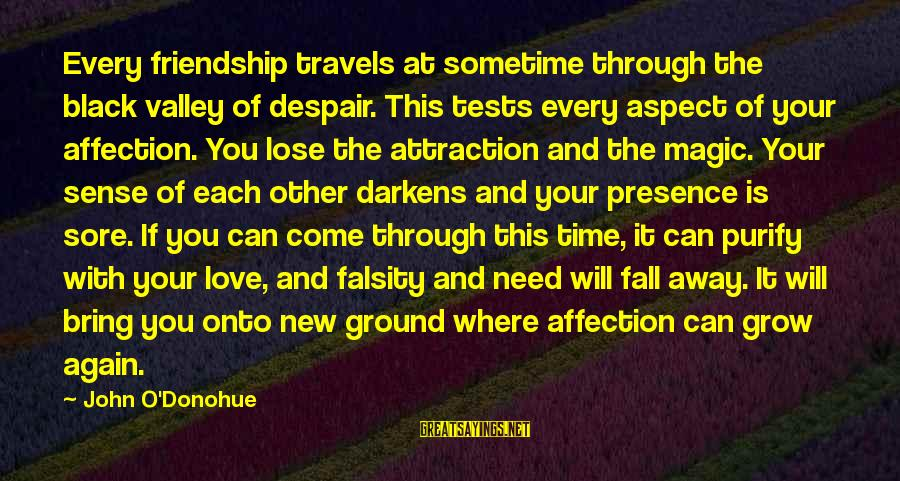 The Magic Of Friendship Sayings By John O'Donohue: Every friendship travels at sometime through the black valley of despair. This tests every aspect