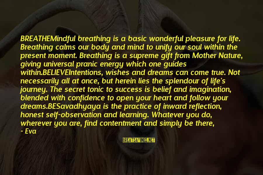 The Mother Nature Sayings By Eva: BREATHEMindful breathing is a basic wonderful pleasure for life. Breathing calms our body and mind
