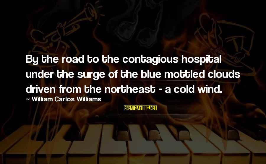 The Northeast Sayings By William Carlos Williams: By the road to the contagious hospital under the surge of the blue mottled clouds