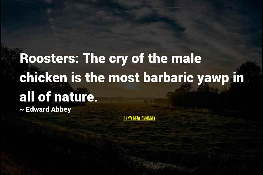 The Princess Bride Book Love Sayings By Edward Abbey: Roosters: The cry of the male chicken is the most barbaric yawp in all of