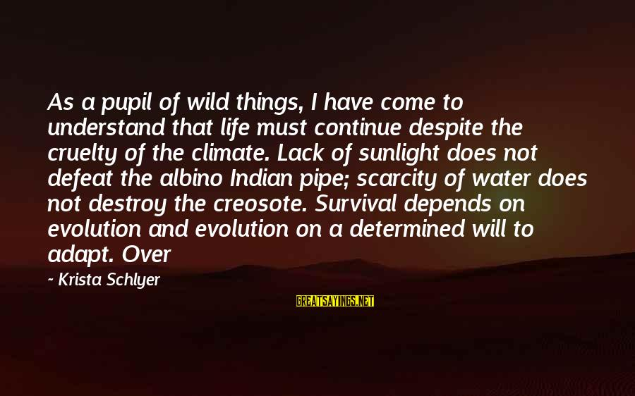 The Scarcity Of Water Sayings By Krista Schlyer: As a pupil of wild things, I have come to understand that life must continue