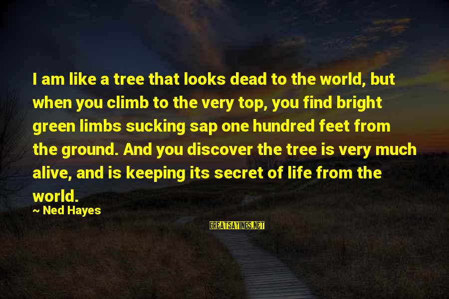 The Secret Of Life Sayings By Ned Hayes: I am like a tree that looks dead to the world, but when you climb
