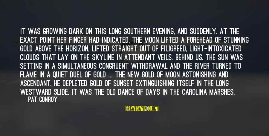 The Skyline Sayings By Pat Conroy: It was growing dark on this long southern evening, and suddenly, at the exact point