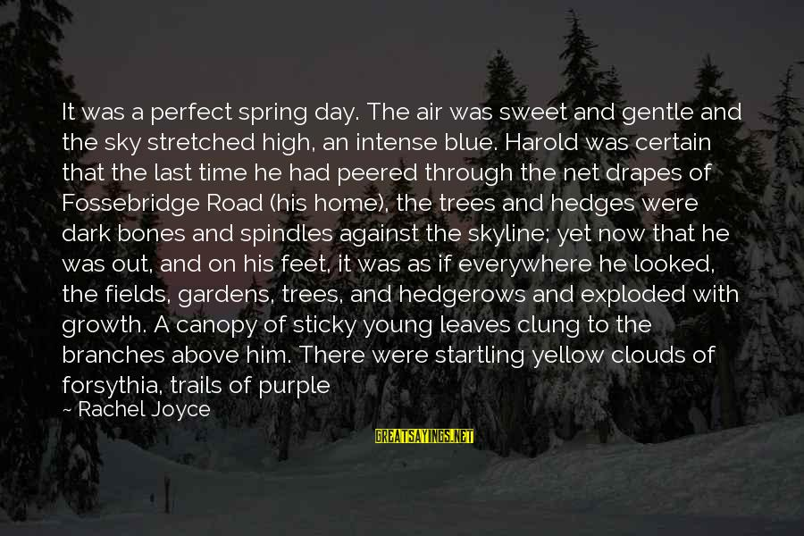 The Skyline Sayings By Rachel Joyce: It was a perfect spring day. The air was sweet and gentle and the sky