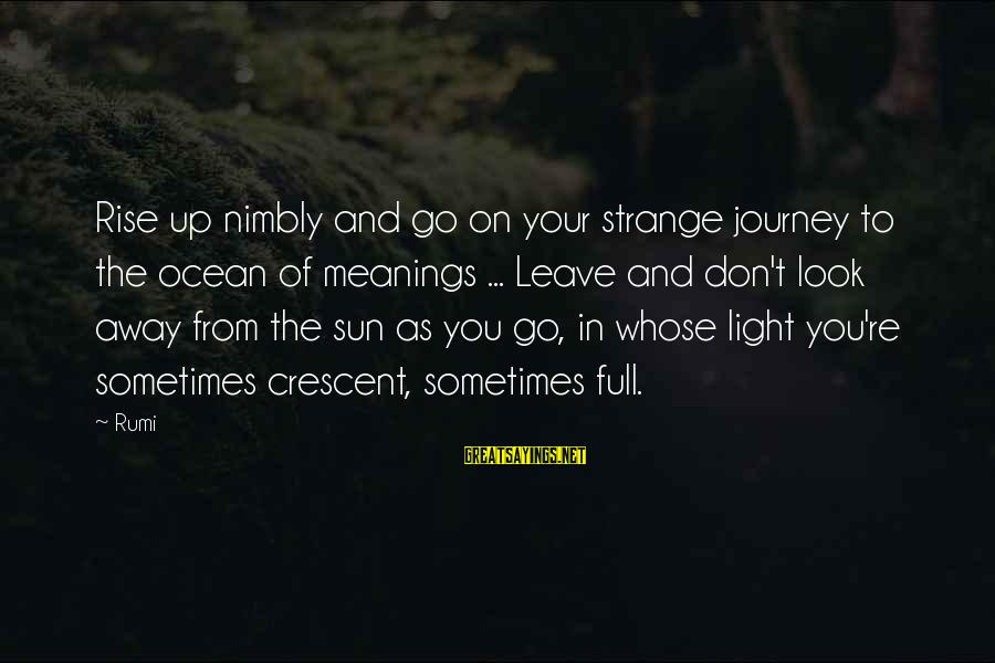 The The Ocean Sayings By Rumi: Rise up nimbly and go on your strange journey to the ocean of meanings ...