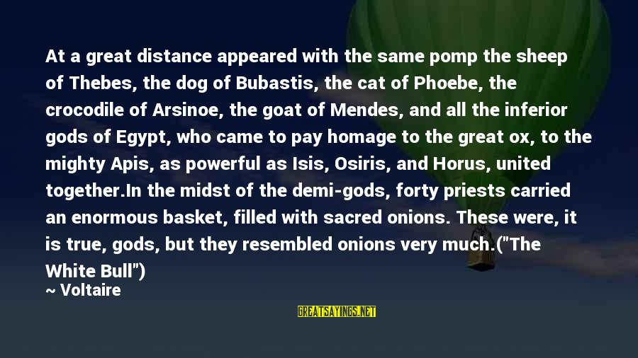 Thebes Sayings By Voltaire: At a great distance appeared with the same pomp the sheep of Thebes, the dog