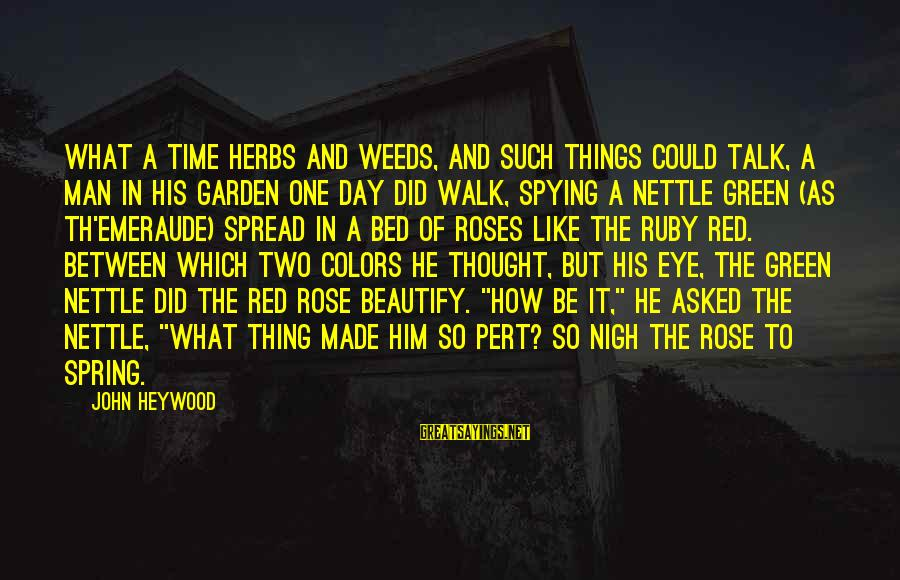 Th'emeraude Sayings By John Heywood: What a time herbs and weeds, and such things could talk, A man in his