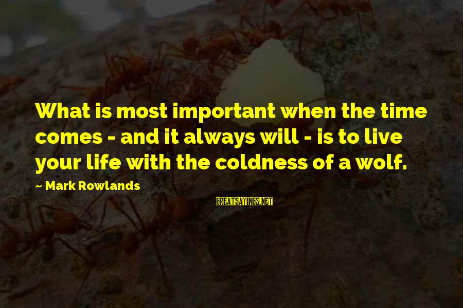 There Comes A Time In Our Life Sayings By Mark Rowlands: What is most important when the time comes - and it always will - is