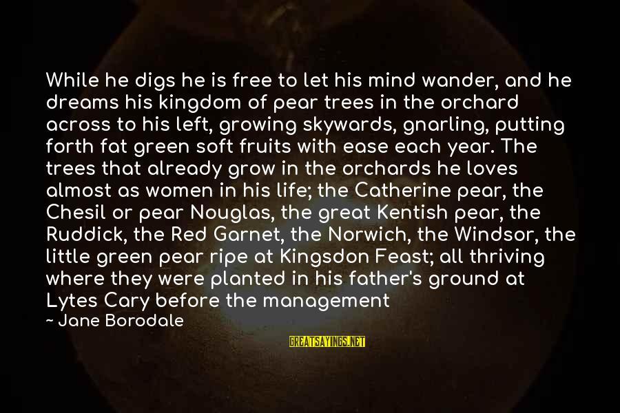 There's So Much More To Life Sayings By Jane Borodale: While he digs he is free to let his mind wander, and he dreams his