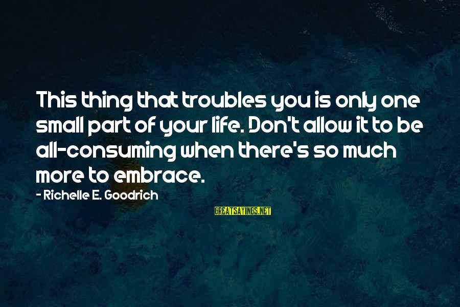 There's So Much More To Life Sayings By Richelle E. Goodrich: This thing that troubles you is only one small part of your life. Don't allow