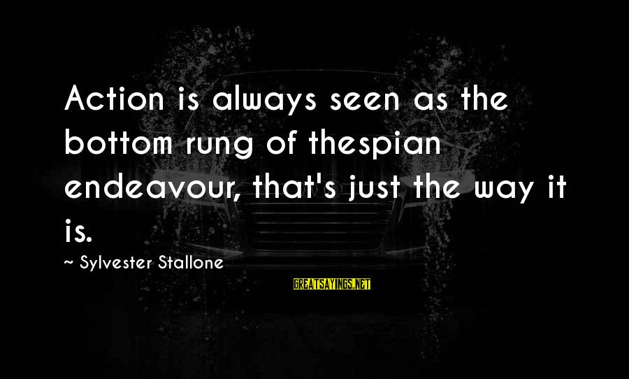 Thespian Sayings By Sylvester Stallone: Action is always seen as the bottom rung of thespian endeavour, that's just the way