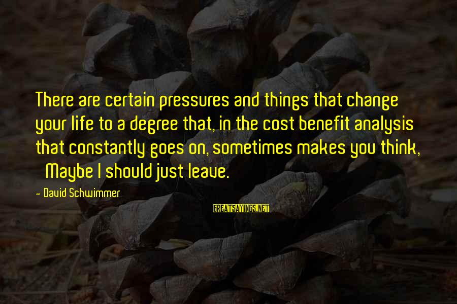 Things That Change Your Life Sayings By David Schwimmer: There are certain pressures and things that change your life to a degree that, in