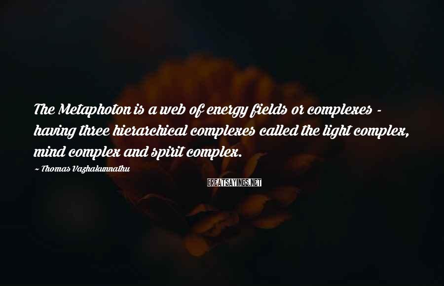 Thomas Vazhakunnathu Sayings: The Metaphoton is a web of energy fields or complexes - having three hierarchical complexes