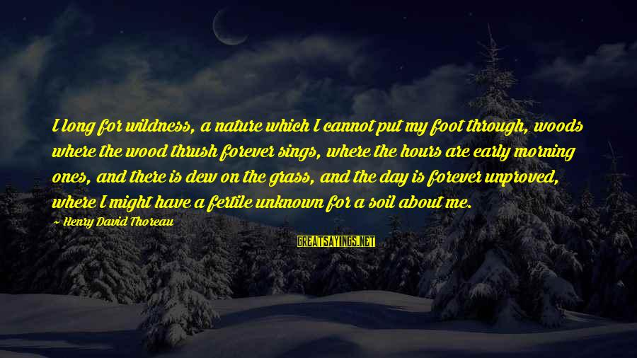 Thoreau Wildness Sayings By Henry David Thoreau: I long for wildness, a nature which I cannot put my foot through, woods where