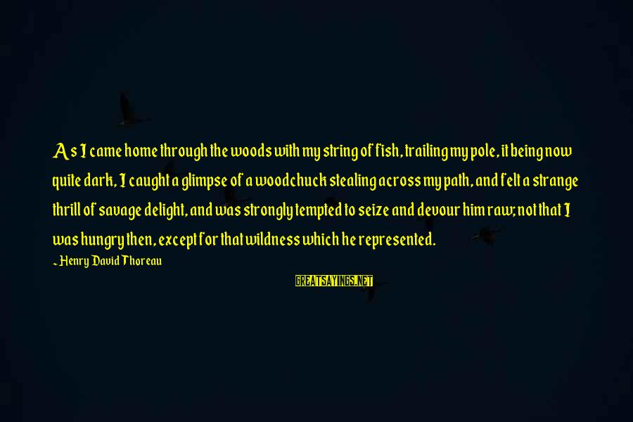 Thoreau Wildness Sayings By Henry David Thoreau: As I came home through the woods with my string of fish, trailing my pole,