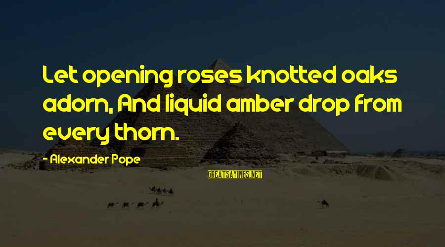 Thorn Sayings By Alexander Pope: Let opening roses knotted oaks adorn, And liquid amber drop from every thorn.