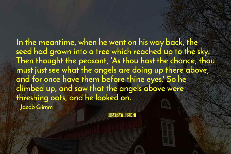 Threshing Sayings By Jacob Grimm: In the meantime, when he went on his way back, the seed had grown into