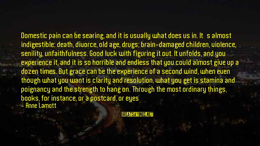 Through The Decades Sayings By Anne Lamott: Domestic pain can be searing, and it is usually what does us in. It's almost