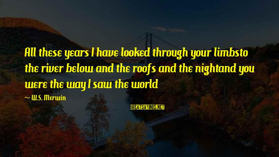 Through The Years Sayings By W.S. Merwin: All these years I have looked through your limbsto the river below and the roofs