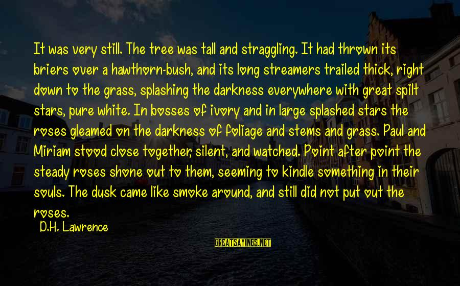 Thrown Around Sayings By D.H. Lawrence: It was very still. The tree was tall and straggling. It had thrown its briers