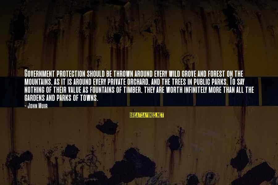 Thrown Around Sayings By John Muir: Government protection should be thrown around every wild grove and forest on the mountains, as