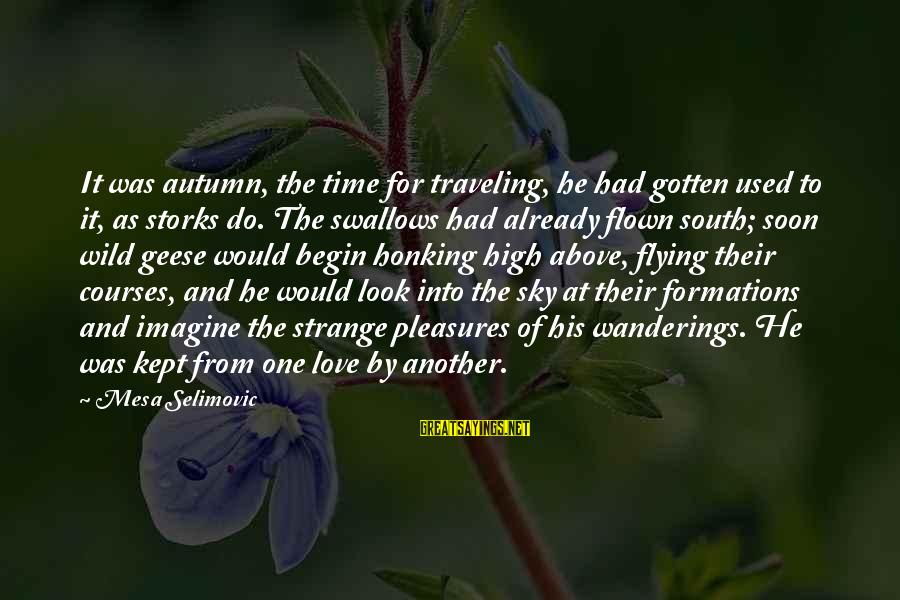 Time Flying By Sayings By Mesa Selimovic: It was autumn, the time for traveling, he had gotten used to it, as storks