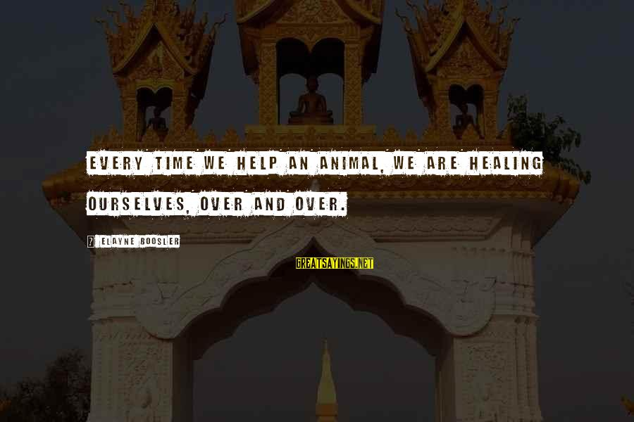 Time Healing Sayings By Elayne Boosler: Every time we help an animal, we are healing ourselves, over and over.