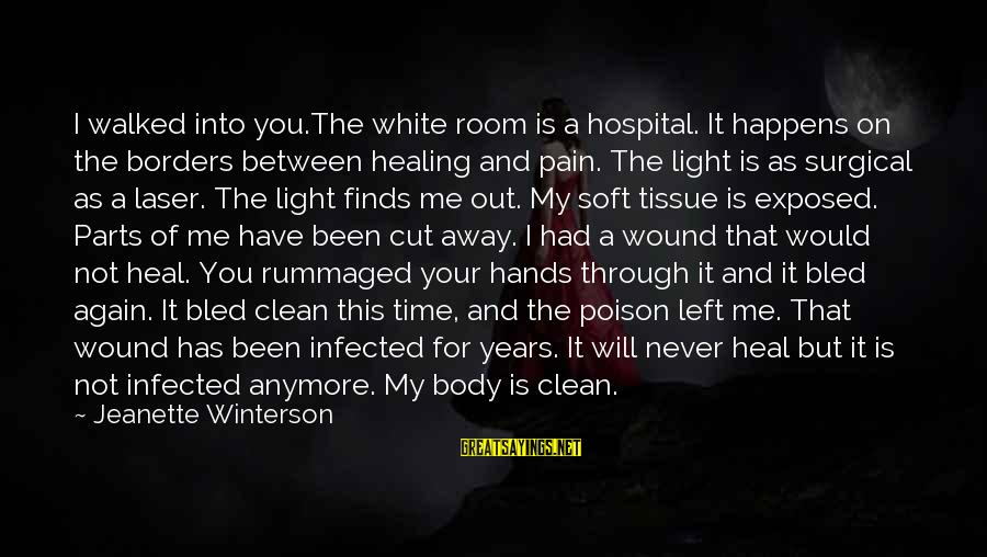 Time Healing Sayings By Jeanette Winterson: I walked into you.The white room is a hospital. It happens on the borders between