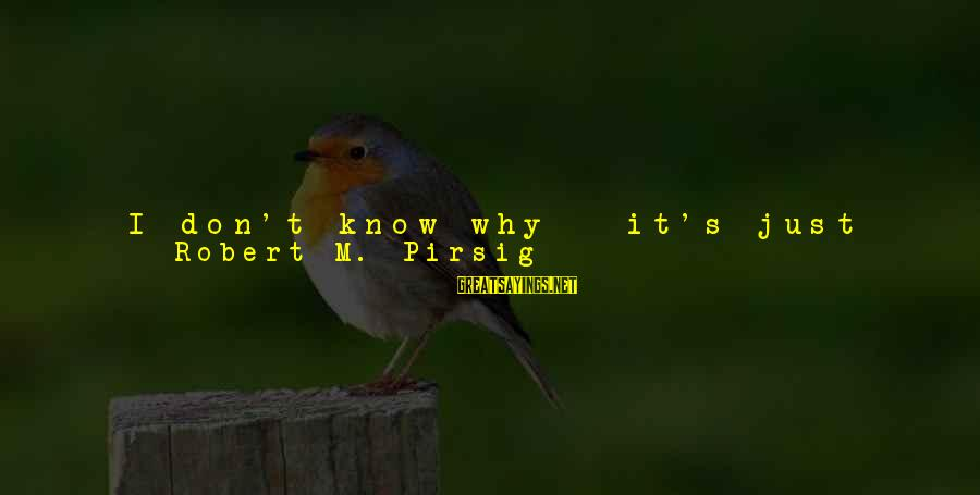 Time To Change Myself Sayings By Robert M. Pirsig: I don't know why - it's just that - I don't know - they're not