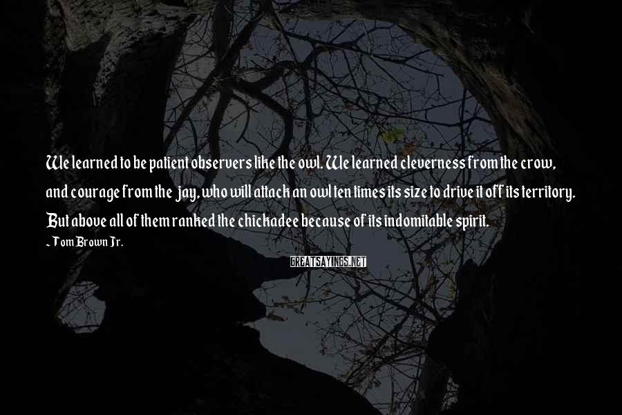 Tom Brown Jr. Sayings: We learned to be patient observers like the owl. We learned cleverness from the crow,