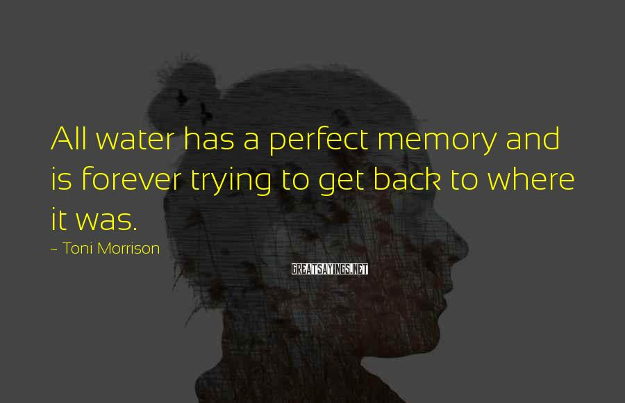 Toni Morrison Sayings: All water has a perfect memory and is forever trying to get back to where