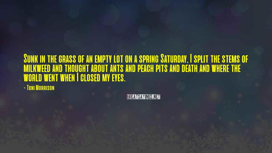 Toni Morrison Sayings: Sunk in the grass of an empty lot on a spring Saturday, I split the
