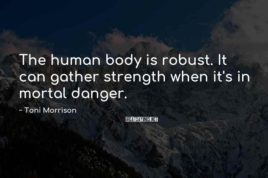 Toni Morrison Sayings: The human body is robust. It can gather strength when it's in mortal danger.