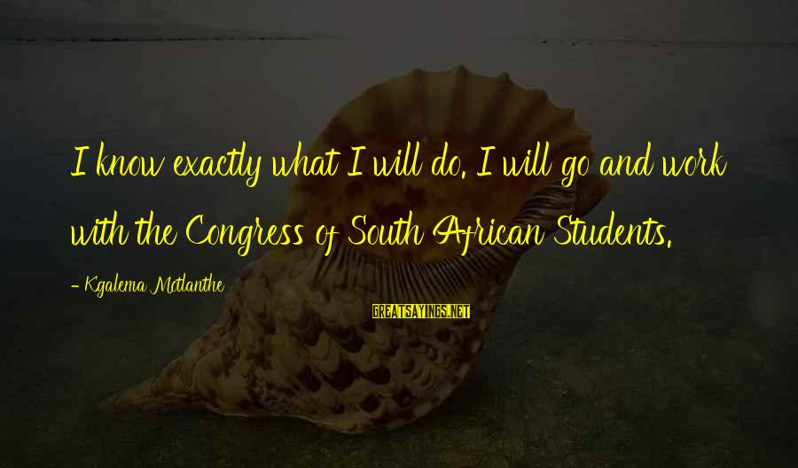 Torus Sayings By Kgalema Motlanthe: I know exactly what I will do. I will go and work with the Congress