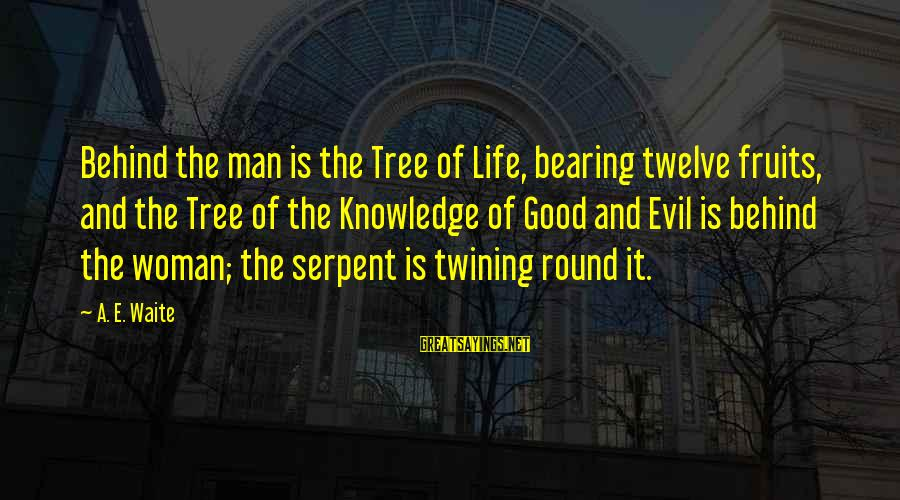 Tree Knowledge Sayings By A. E. Waite: Behind the man is the Tree of Life, bearing twelve fruits, and the Tree of