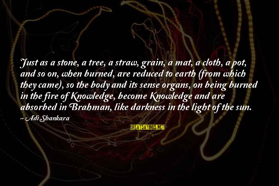 Tree Knowledge Sayings By Adi Shankara: Just as a stone, a tree, a straw, grain, a mat, a cloth, a pot,