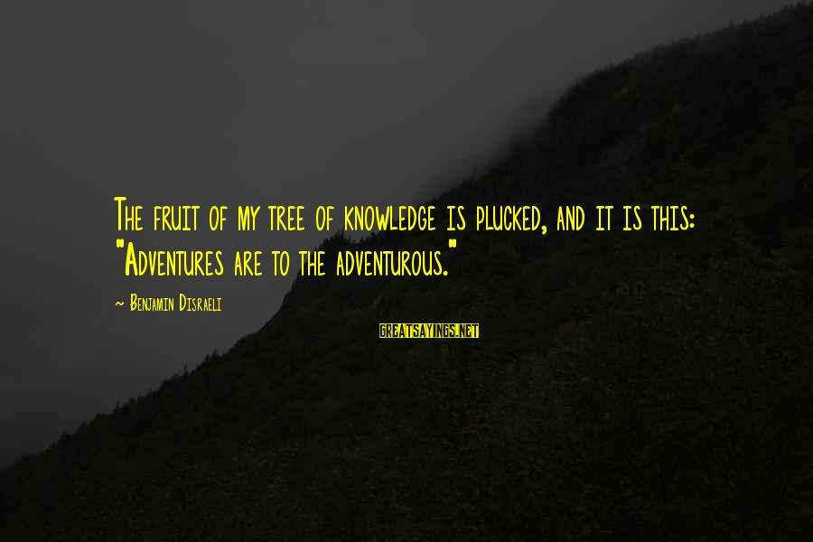 """Tree Knowledge Sayings By Benjamin Disraeli: The fruit of my tree of knowledge is plucked, and it is this: """"Adventures are"""