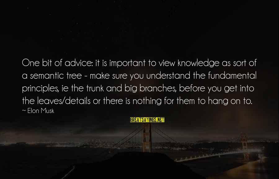 Tree Knowledge Sayings By Elon Musk: One bit of advice: it is important to view knowledge as sort of a semantic