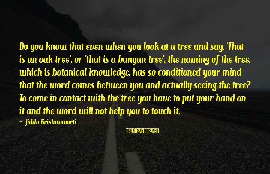 Tree Knowledge Sayings By Jiddu Krishnamurti: Do you know that even when you look at a tree and say, 'That is