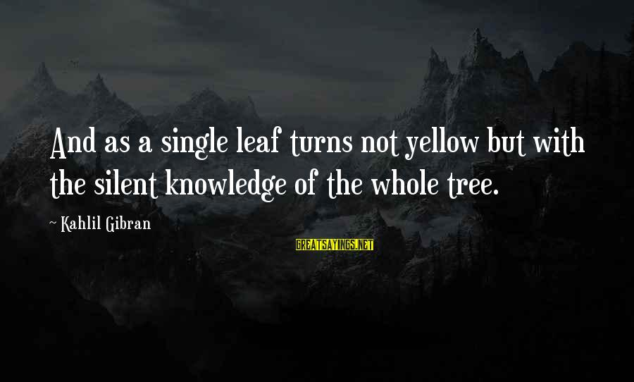 Tree Knowledge Sayings By Kahlil Gibran: And as a single leaf turns not yellow but with the silent knowledge of the