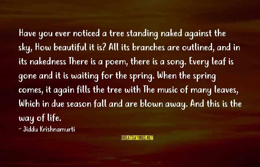 Tree Leaves Sayings By Jiddu Krishnamurti: Have you ever noticed a tree standing naked against the sky, How beautiful it is?