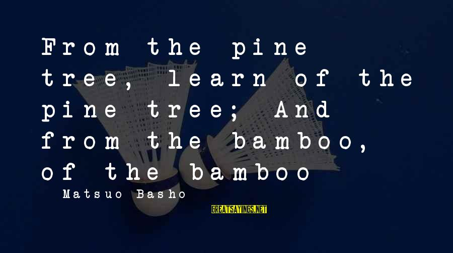 Tree Of Life Inspirational Sayings By Matsuo Basho: From the pine tree, learn of the pine tree; And from the bamboo, of the