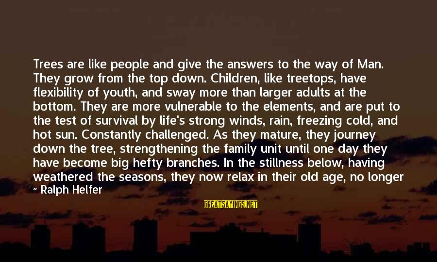 Tree Of Life Inspirational Sayings By Ralph Helfer: Trees are like people and give the answers to the way of Man. They grow