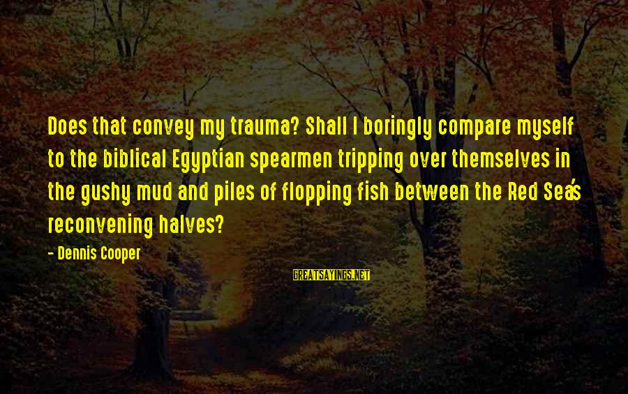 Tripping Over You Sayings By Dennis Cooper: Does that convey my trauma? Shall I boringly compare myself to the biblical Egyptian spearmen
